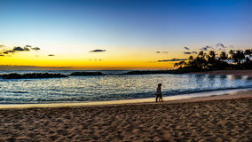 Couple enjoying the Sunset over the lagoon and beach under blue sky on the West Coast of Oahu. Couple enjoying the sunset over the lagoon and beach under blue Royalty Free Stock Photography
