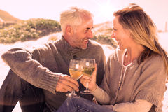Couple enjoying white wine on picnic at the beach Royalty Free Stock Images