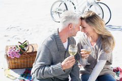Couple enjoying white wine on picnic at the beach smiling at each other Royalty Free Stock Image