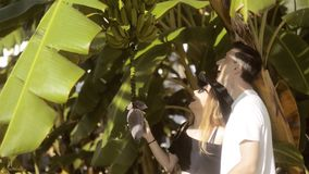 Couple exploring the nature - examining banana tree, flower and fruits growing on a green tree. Beautiful lovers. Couple hugs. Smiles, laughs, kisses. Makes stock video
