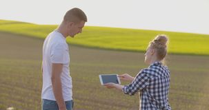 Couple on farm talking in field of green plants. Farmer using digital tablet. Agricultural farming background, digital tablet agriculture industry usage stock video footage