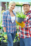 Couple of farmers Royalty Free Stock Photo