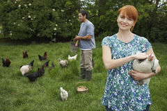 Couple Feeding Hens On Grassland Royalty Free Stock Images