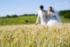Couple in field Royalty Free Stock Images
