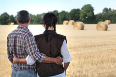 Couple in a field Stock Photography