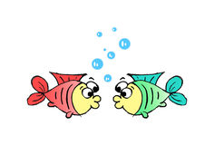 Couple fish. Red and green fish emitting bubbles Stock Photos