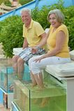 Couple at fish spa skin treatment Stock Images