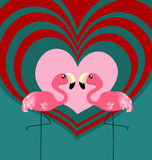 Couple flamingo love. Cute couple flamingo with heart graphic Royalty Free Stock Photography