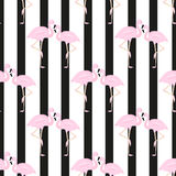 Couple flamingos.vertical stripes. Seamless background Royalty Free Stock Photography