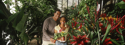Couple With Flower Pot In Greenhouse Royalty Free Stock Photo