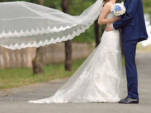 Couple and Flying Veil Royalty Free Stock Images