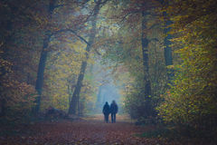 Couple in foggy forest Stock Photos