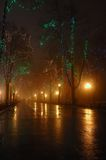 Couple at foggy night,Odessa ,ukraine. Foggy night on Primorskii Boulevard,Odessa,Ukraine royalty free stock photography