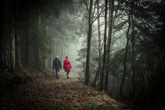 Couple on forest walk Stock Photos