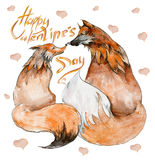 Couple of foxes in love on white background with hearts and the sign `Happy Valentine`s day` Stock Images