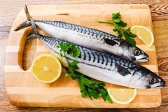 Couple of fresh mackerel. On wood Stock Image