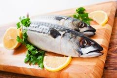 Couple of fresh mackerel Stock Photography