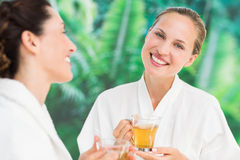 Couple friends having a spa day Royalty Free Stock Photography