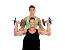 Couple of friends lifting weights