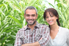 Couple in front of plants Royalty Free Stock Photography