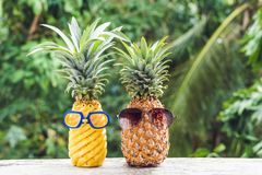 Couple of funny attractive pineapples in glasses and glasses for swimming on a tropical terrace. tropical island stock photography