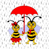 A couple of funny cartoon bees under red umbrella  Stock Images