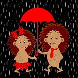 A couple of funny cartoon hedgehogs under red umbr Stock Images