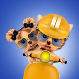 Couple of funny dogs on a motorbike Royalty Free Stock Photography