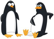 A couple of funny penguins Stock Images