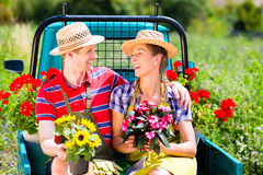 Couple in garden with flowers on gape. Happy couple in garden with flowers on gape Royalty Free Stock Images