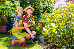 Couple in garden with flowers Stock Images