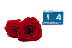 A couple gift roses on valentine day Royalty Free Stock Image