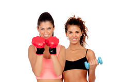 Couple of girls playing sports in gym. Isolated on white background royalty free stock image