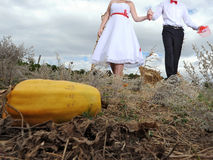 Couple Going to Pumpkin Royalty Free Stock Image