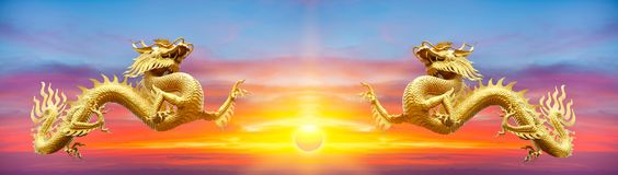 Couple gold dragon on sunset background.Golden chinese dragon on Royalty Free Stock Image