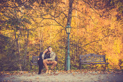 Couple in gold fall Stock Images