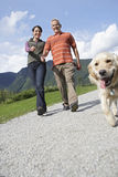 Couple With Golden Retriever On Country Road Royalty Free Stock Images