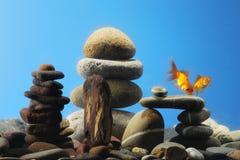 Couple goldfish in aquarium. Over well-arranged zen stone Royalty Free Stock Photography