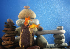 Couple goldfish in aquarium Stock Photo
