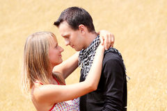 Couple in grain field Stock Photography