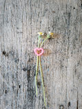 Couple of grass flower and heart on wood. Stock Photos