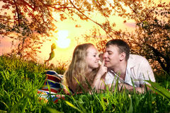 Couple on green grass at sunset stock image