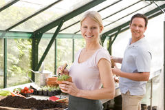 Couple in greenhouse raking soil in pots smiling Royalty Free Stock Photo