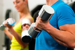 Couple in gym exercising with dumbbells Royalty Free Stock Photos