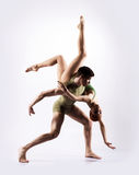 Couple of gymnasts posing on a light background Royalty Free Stock Image