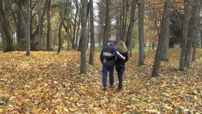 Couple hand autumn path stock footage
