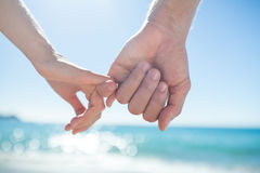 Couple hand in hand Royalty Free Stock Image