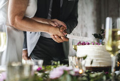 Couple Hands Cutting Wedding Cake Stock Images