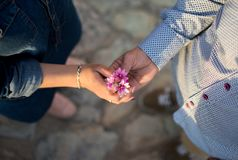 Couple hands with flowers at sunset stock image