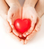 Couple hands holding red heart Stock Photography
